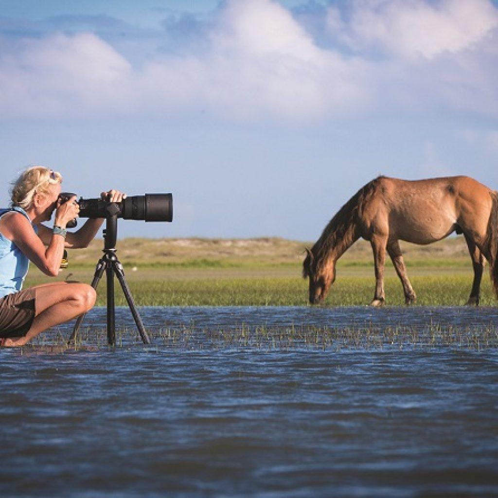 lisa cueman photographing horse